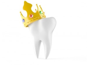 dental crown and bridge palm harbor fl